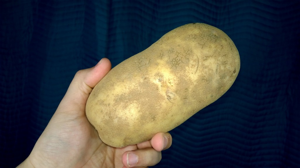 potato unboxing long term review somegadgetguy